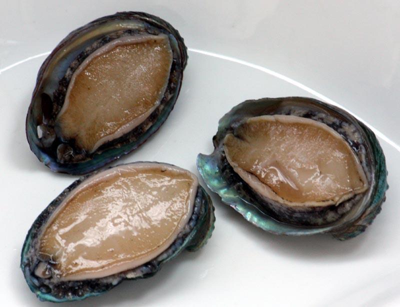 Freshly shucked abalone