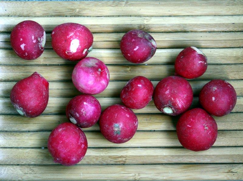 radishes (1)