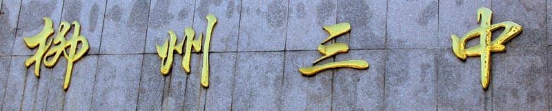 Liuzhou No 3