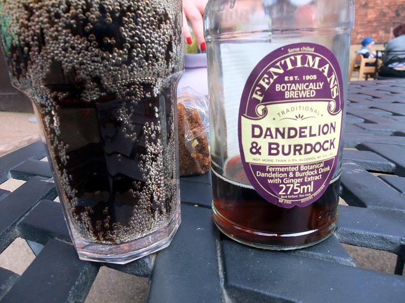 Dandelion_and_burdock